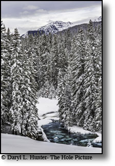 Hyalite Cree, Bozeman Montana, winter, deep snow, icy creek