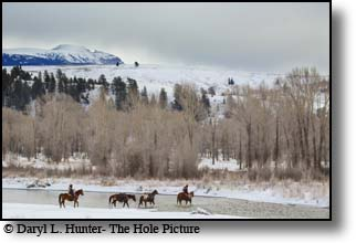 Pack Trip, Jackson Hole, Wyoming