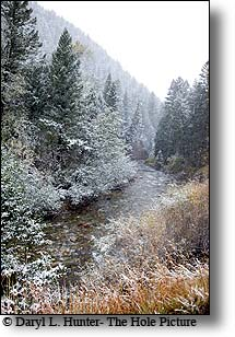 mill creek, snowstorm, fall, paradise valley,montana