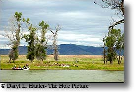 fly-fishermen floating down Yellowstone River in drift boat as they fish for trout