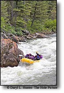Gallatin River Whitewater Rafting