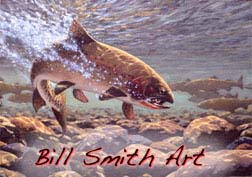 Bill Smith Art