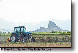 farming, cody wyoming