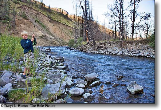boy landing fish, greybull River, cody wyoming
