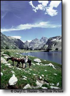 horseback rider, lake solitude, grand tetons, grand teton national park, cowboy, wyoming