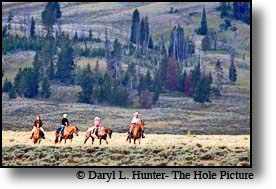 Yellowstone Park Trail Ride - Swan Flats