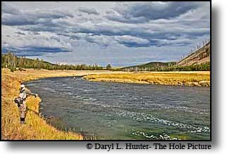 Fly-fishing the Madison River in Yellowstone National Park
