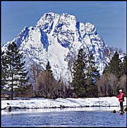 fly fishing Snake River under Mt. Moran in Grand Teton National Park