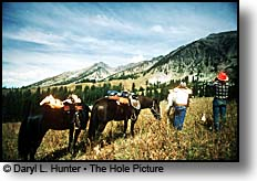 Hunters, Gros Ventre Wilderness