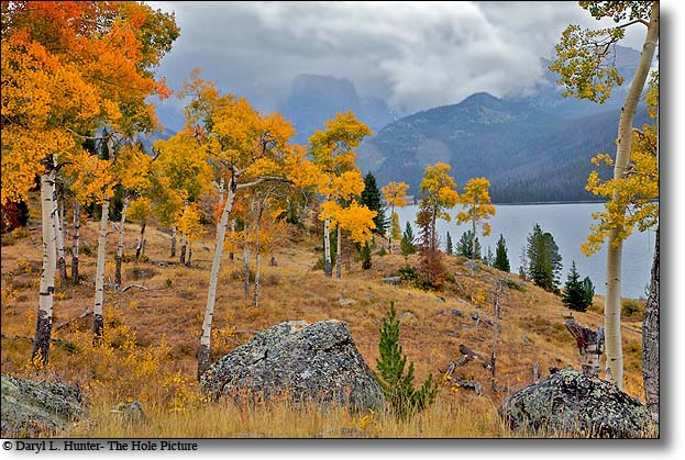 Fall, Golden Aspen, Green River Lake, Squaretop