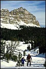 cross country skiers Shoshone National Forest